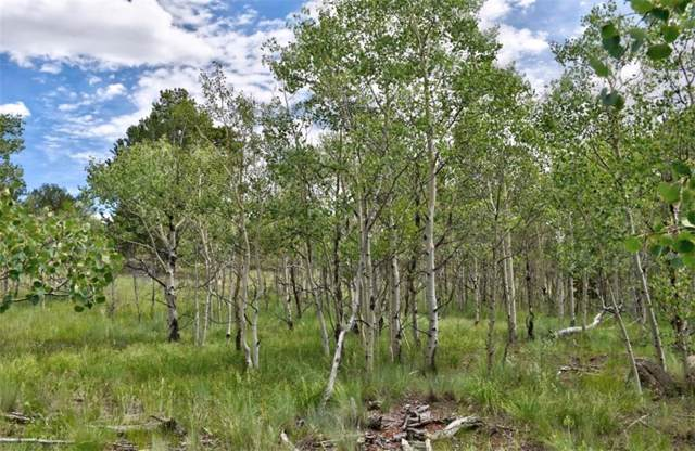 58 Ute Circle, Como, CO 80432 (MLS #S1014899) :: Resort Real Estate Experts