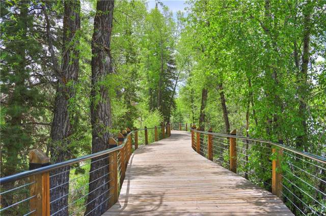 930 Blue River Parkway #1022, Silverthorne, CO 80498 (MLS #S1014939) :: Colorado Real Estate Summit County, LLC