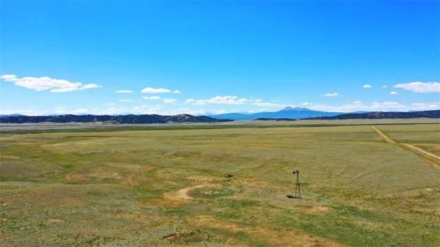 427 Ranger Hill Road, Hartsel, CO 80449 (MLS #S1014959) :: Colorado Real Estate Summit County, LLC