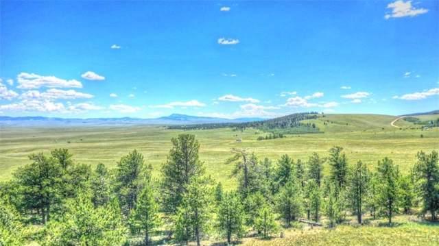 7209 Ranch Road, Hartsel, CO 80449 (MLS #S1014963) :: Colorado Real Estate Summit County, LLC