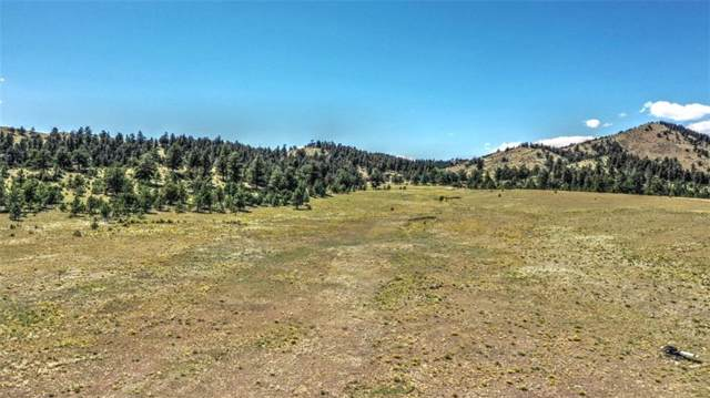 127 Sedgewich Drive, Hartsel, CO 80449 (MLS #S1014964) :: eXp Realty LLC - Resort eXperts
