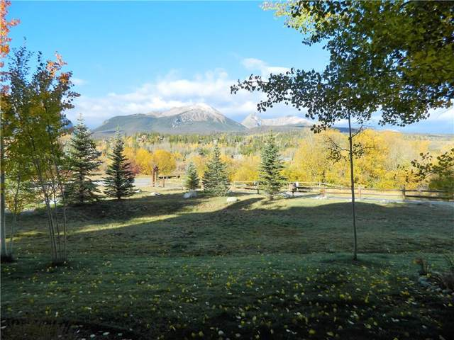 172 Allegra Lane #172, Silverthorne, CO 80498 (MLS #S1014974) :: Dwell Summit Real Estate