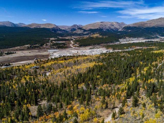 90 Dead Toad Road, Alma, CO 80420 (MLS #S1014993) :: Colorado Real Estate Summit County, LLC