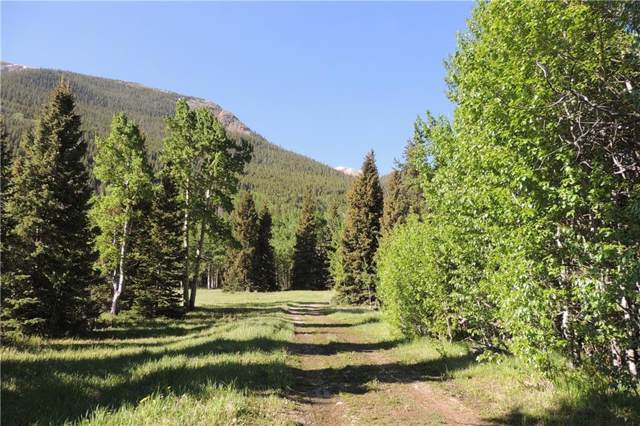 2182 Silver Valley Rd, Silver Plume, CO 80476 (MLS #S1015007) :: Colorado Real Estate Summit County, LLC