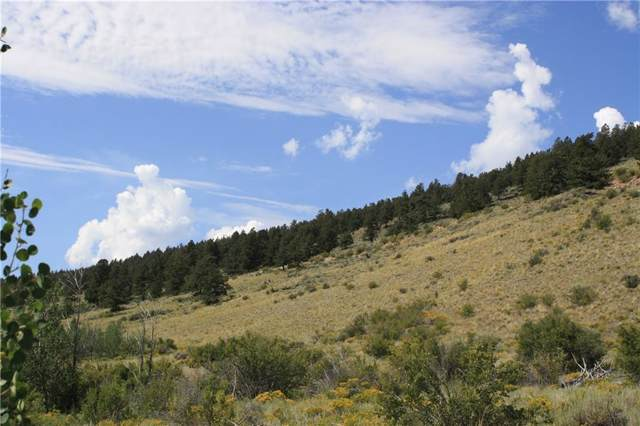 TBD Redhill Road, Fairplay, CO 80440 (MLS #S1015041) :: Resort Real Estate Experts