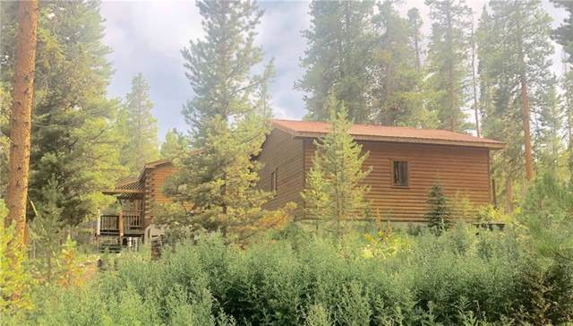 2919 Hwy 300, Leadville, CO 80461 (MLS #S1015067) :: Colorado Real Estate Summit County, LLC