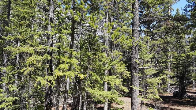 Lot 0656 Miners Way, Fairplay, CO 80440 (MLS #S1015069) :: Colorado Real Estate Summit County, LLC
