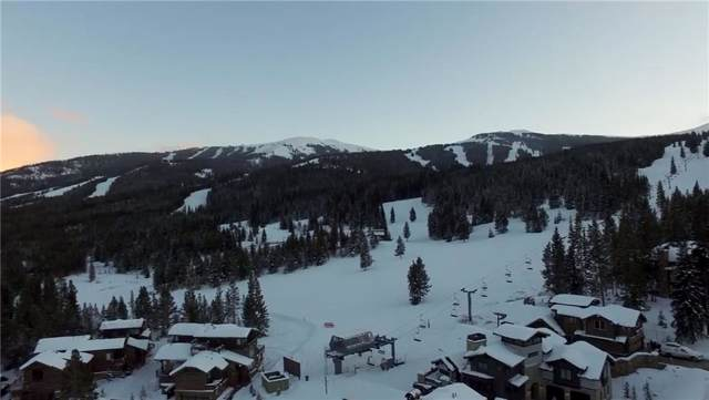50 Cr 1021 Place, Copper Mountain, CO 80443 (MLS #S1015076) :: Colorado Real Estate Summit County, LLC