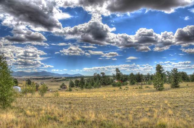 890 Buffalo Ridge Road, Como, CO 80432 (MLS #S1015206) :: eXp Realty LLC - Resort eXperts
