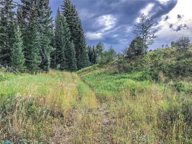 TBD County Road 373, Parshall, CO 80468 (MLS #S1015280) :: Colorado Real Estate Summit County, LLC