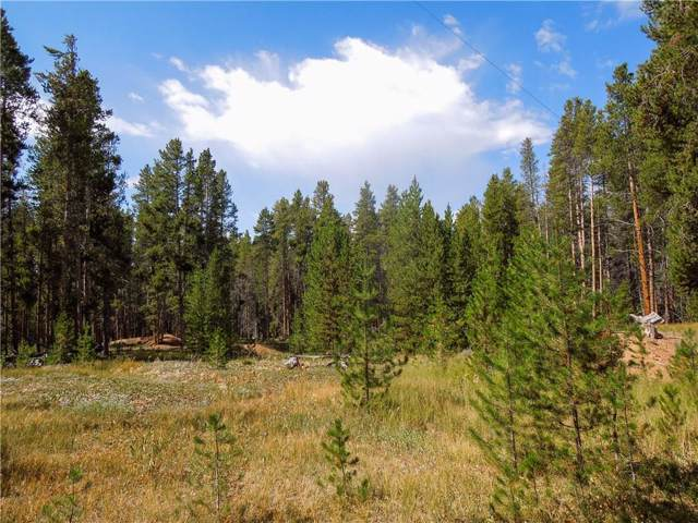 741 Rose Placer, Leadville, CO 80461 (MLS #S1015300) :: eXp Realty LLC - Resort eXperts