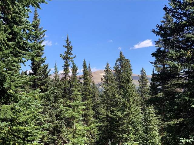 143 Pyrite Place, Alma, CO 80420 (MLS #S1015329) :: Resort Real Estate Experts