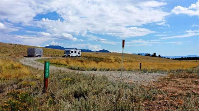 1298 Superstition Trail, Hartsel, CO 80449 (MLS #S1015338) :: Dwell Summit Real Estate