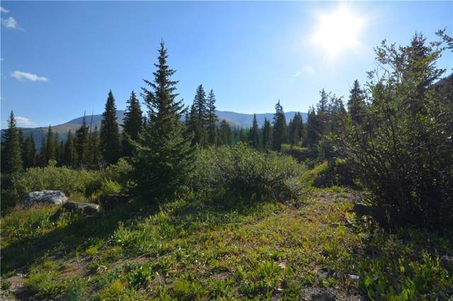 80 Cr 671, Breckenridge, CO 80424 (MLS #S1015344) :: Resort Real Estate Experts
