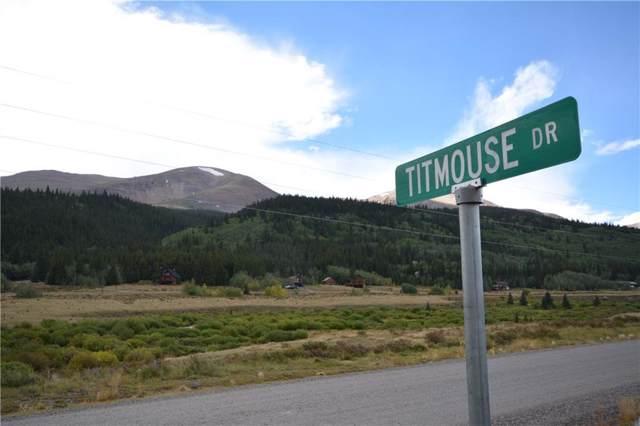 124 Titmouse Drive, Alma, CO 80420 (MLS #S1015345) :: Resort Real Estate Experts