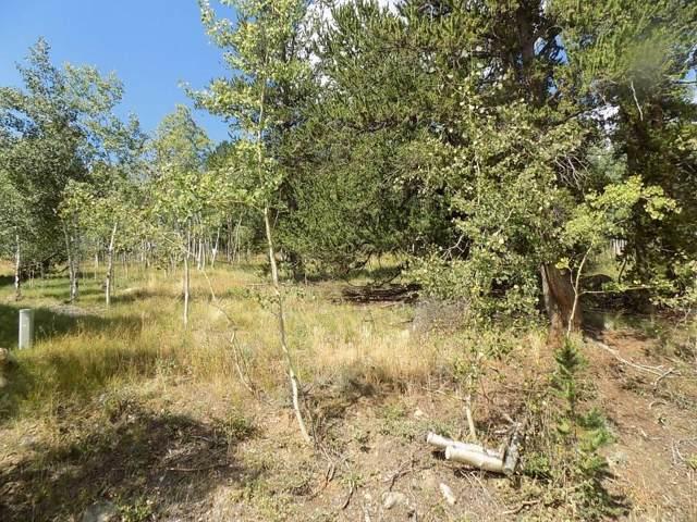 95 Aspen Way, Fairplay, CO 80440 (MLS #S1015350) :: Dwell Summit Real Estate