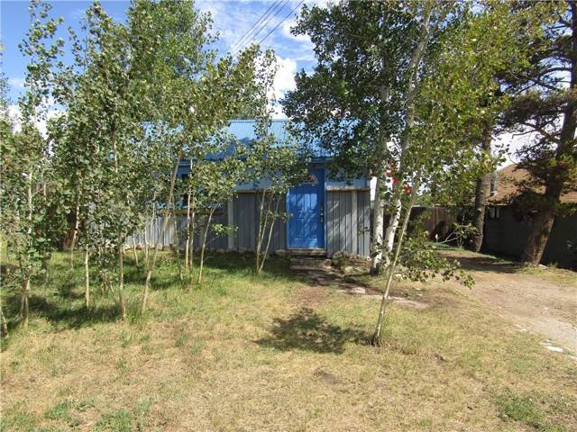 504 Bogue Street, Fairplay, CO 80440 (MLS #S1015396) :: Colorado Real Estate Summit County, LLC