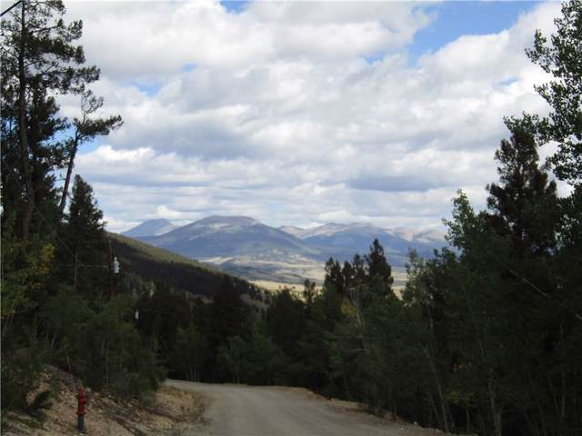 3067 Middle Fork, Fairplay, CO 80440 (MLS #S1015472) :: Resort Real Estate Experts