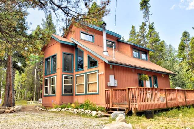 149 Green Bottle Circle, Fairplay, CO 80440 (MLS #S1015517) :: Colorado Real Estate Summit County, LLC