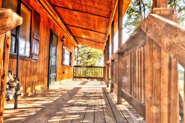318 Rawhide Way, Como, CO 80432 (MLS #S1015519) :: Dwell Summit Real Estate