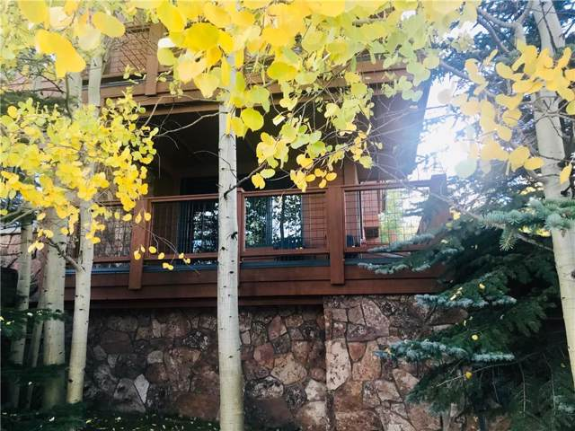 35 Mountain Thunder Drive #5110, Breckenridge, CO 80424 (MLS #S1015621) :: Resort Real Estate Experts