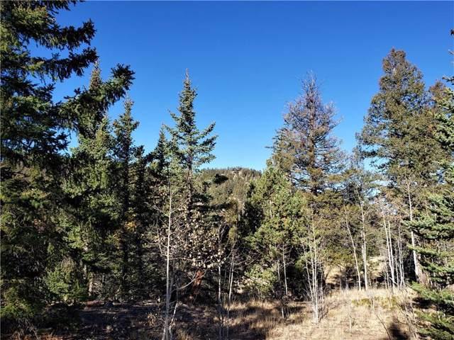 191 Cradle Board Court, Como, CO 80456 (MLS #S1015652) :: Colorado Real Estate Summit County, LLC