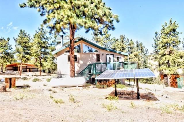 3135 Muley Gulch Drive, Hartsel, CO 80449 (MLS #S1015692) :: eXp Realty LLC - Resort eXperts