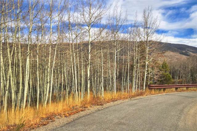 2215 Currant Way, Silverthorne, CO 80498 (MLS #S1015711) :: Colorado Real Estate Summit County, LLC