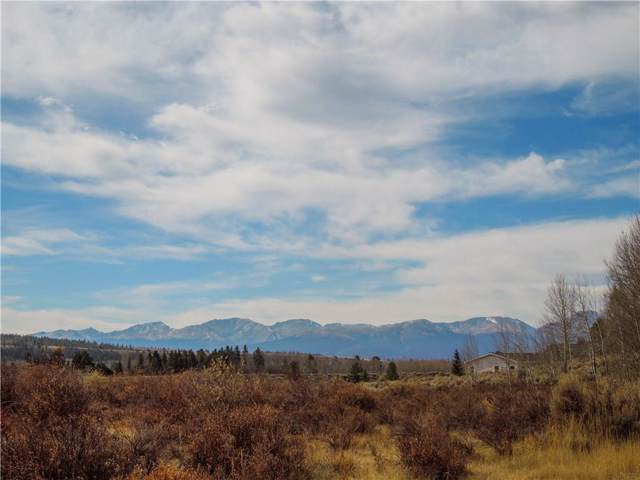 413 Mallard Rd, Leadville, CO 80461 (MLS #S1015758) :: Colorado Real Estate Summit County, LLC