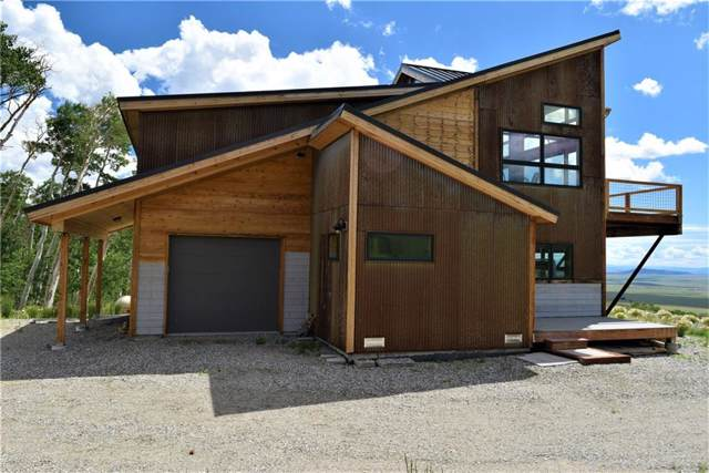 2831 High Creek Road, Fairplay, CO 80440 (MLS #S1015815) :: Colorado Real Estate Summit County, LLC
