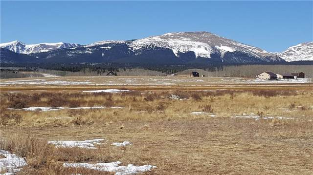 Lot 10 Co Rd 18 Road, Fairplay, CO 80440 (MLS #S1015891) :: Dwell Summit Real Estate