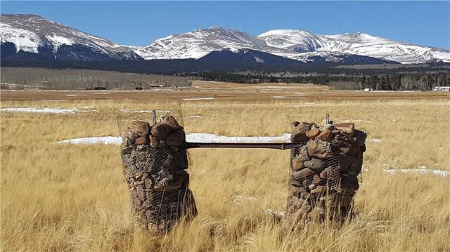 Lot 9 Co Rd 18 Road, Fairplay, CO 80440 (MLS #S1015892) :: Dwell Summit Real Estate
