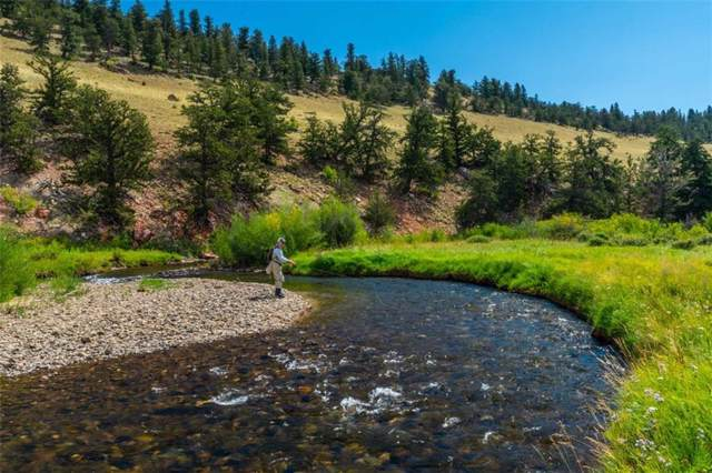 HWY 9, Fairplay, CO 80440 (MLS #S1015903) :: eXp Realty LLC - Resort eXperts