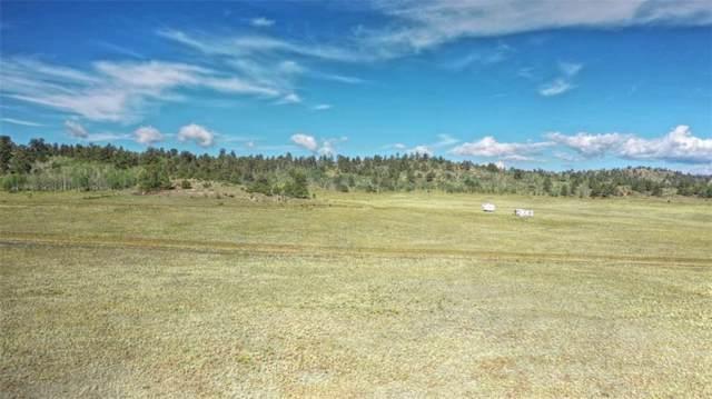 289 Cochiti Road, Hartsel, CO 80449 (MLS #S1015972) :: Colorado Real Estate Summit County, LLC