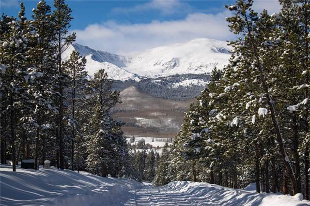 700 Spruce Drive, Twin Lakes, CO 81251 (MLS #S1017122) :: Colorado Real Estate Summit County, LLC