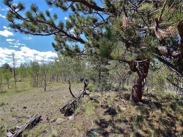 704 Hawk Way, Como, CO 80432 (MLS #S1017264) :: Colorado Real Estate Summit County, LLC