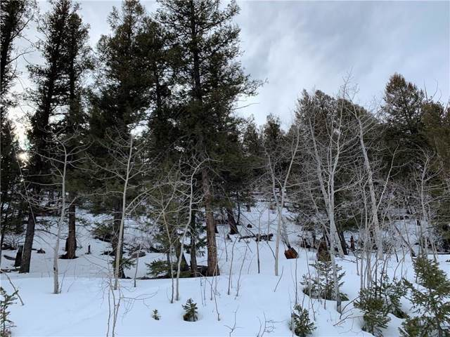 TBD Redhill Rd/Middle Fork Vista, Fairplay, CO 80440 (MLS #S1017296) :: eXp Realty LLC - Resort eXperts
