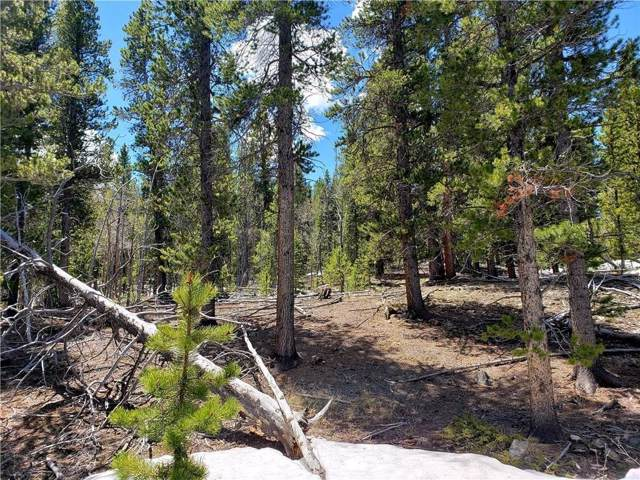 56 Peaceful Court, Fairplay, CO 80440 (MLS #S1017303) :: eXp Realty LLC - Resort eXperts