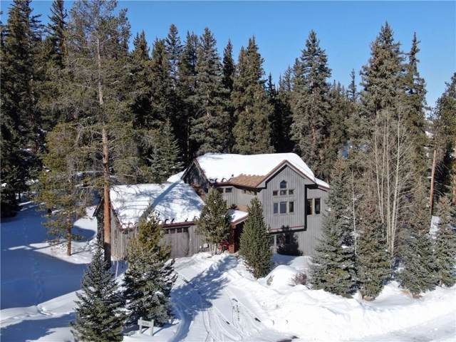 54 Goldenrod Circle, Keystone, CO 80435 (MLS #S1017313) :: Colorado Real Estate Summit County, LLC