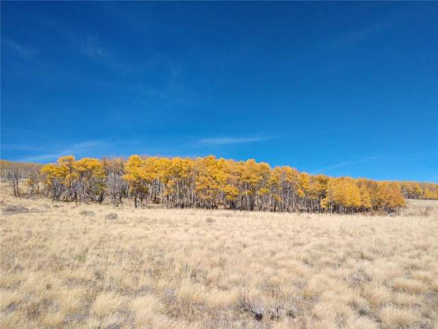 0 Black Mountain Rch Road, Fairplay, CO 80440 (MLS #S1017336) :: Colorado Real Estate Summit County, LLC