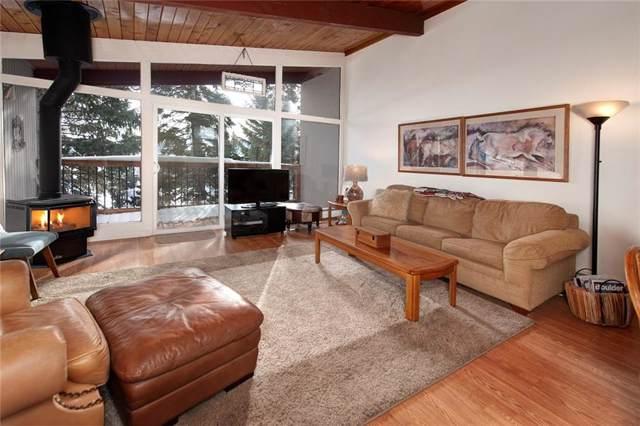301 W La Bonte Street W #10, Dillon, CO 80435 (MLS #S1017398) :: Colorado Real Estate Summit County, LLC