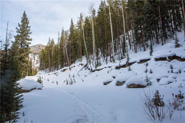 643 Alders Lane, Keystone, CO 80435 (MLS #S1017423) :: eXp Realty LLC - Resort eXperts