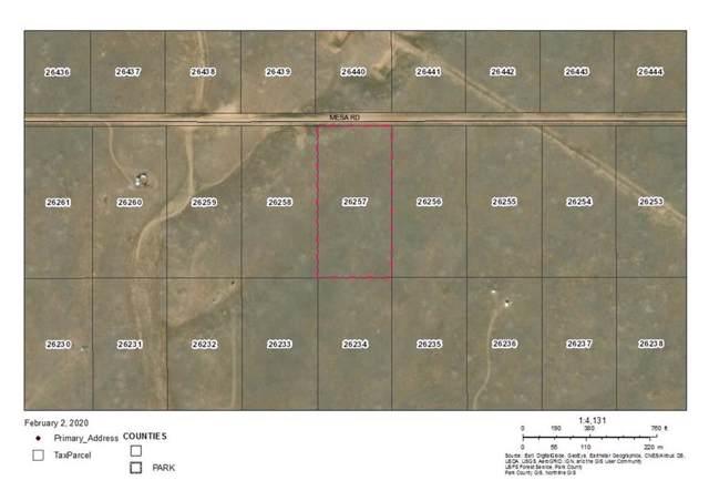 5310 Mesa Road, Hartsel, CO 80449 (MLS #S1017442) :: Dwell Summit Real Estate