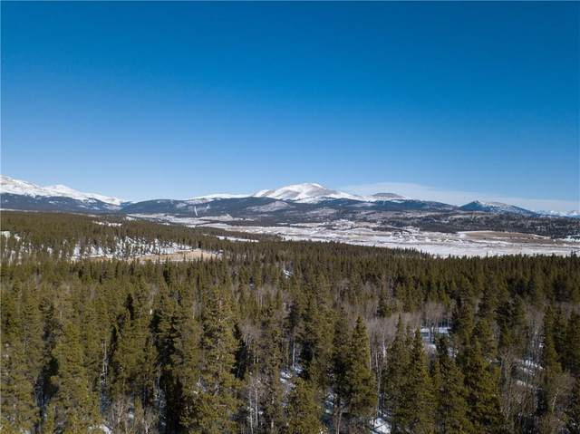 TBD Larry's Road, Fairplay, CO 80440 (MLS #S1017521) :: eXp Realty LLC - Resort eXperts