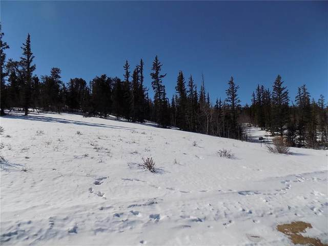 205 Long Rifle Way, Como, CO 80432 (MLS #S1017606) :: eXp Realty LLC - Resort eXperts