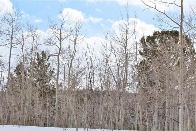 64 Rhea Road, Como, CO 80432 (MLS #S1017619) :: Colorado Real Estate Summit County, LLC