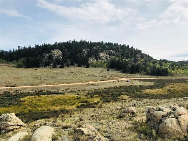 1441 Longbow Drive, Como, CO 80432 (MLS #S1017815) :: Colorado Real Estate Summit County, LLC