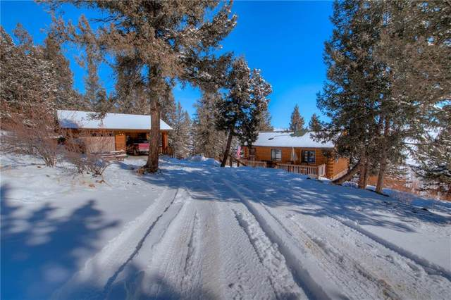 548 Redhill Road, Fairplay, CO 80440 (MLS #S1017832) :: Colorado Real Estate Summit County, LLC