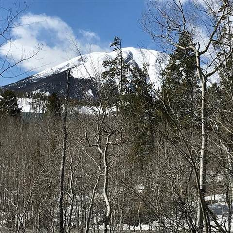 1737 Falcon Drive, Silverthorne, CO 80498 (MLS #S1017868) :: eXp Realty LLC - Resort eXperts