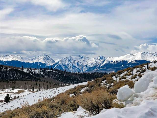 201 Elk Road, Leadville, CO 80461 (MLS #S1017871) :: Colorado Real Estate Summit County, LLC